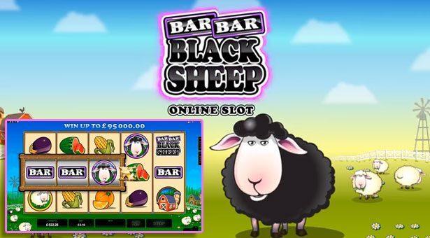 barbar-black-sheep